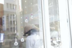 _MG_0123.JPGのサムネール画像のサムネール画像